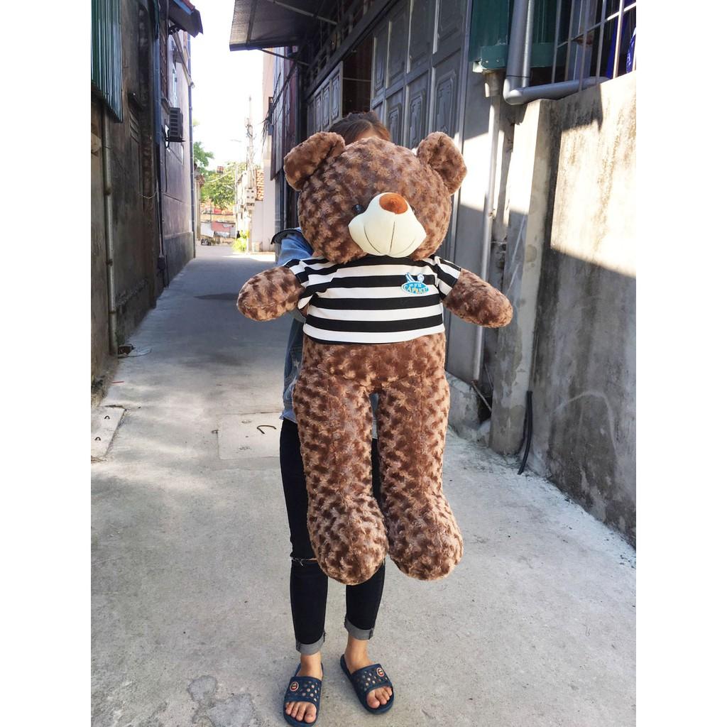 Gấu Bông Teddy Cao Cấp Khổ Vải 80cm Cao 60cm Màu Nâu Hàng VNXK - Tặng Thiệp Mừng 3D -...