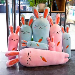 Những chú thỏ ôm củ cà rốt