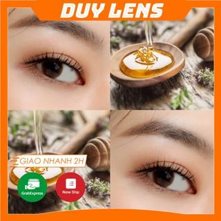 Kính áp tròng Honey U Brown FREESHIP Lens nội địa Hàn độ cận 0- 6 màu nâu mật ong thumbnail