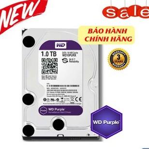 Ổ cứng 1TB HDD Western Purple (Tím) – BH 12 tháng Giá chỉ 740.000₫