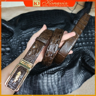Dây nịt – Thắt lưng da cá sấu Konavis cao cấp bản liền nguyên con màu nâu làm từ gai lưng – CB01-02G