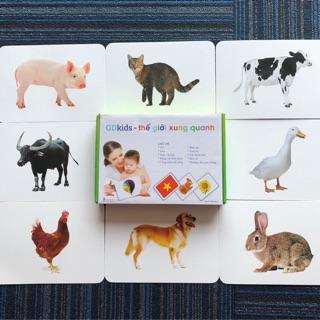 THẺ HỌC THẾ GIỚI XUNG QUANH – 10 CHỦ ĐỀ – 100 THẺ- flash card Glenn Doman- Thế giới xung quanh