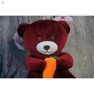 [HN]Gấu Oenpe bông teddy siêu dễ thương, bông cao cấp ôm carot