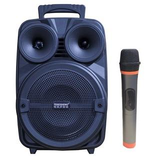 Loa kéo karaoke di động Temeisheng A8-10 – Kèm 01 Micro