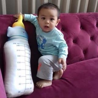 Combo gối ôm bình sữa