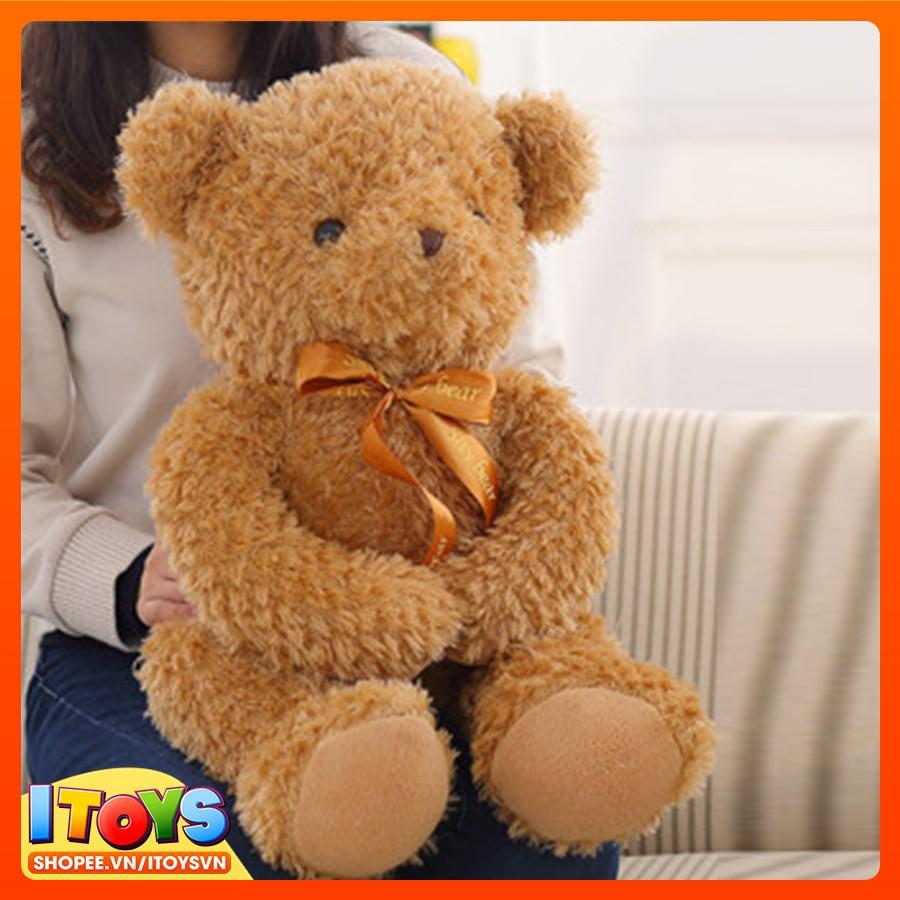 Gấu bông siêu dễ thương, (50cm,60cm,80cm, 100cm, 120cm) cực chất, ôm rất thích các bạn nhé - Gấu Bông ITOYS - [ GB1 ]