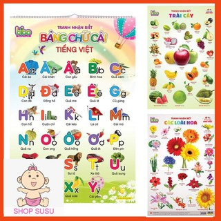 Bộ tranh treo tường học tập 12 chủ đề song ngữ cho bé