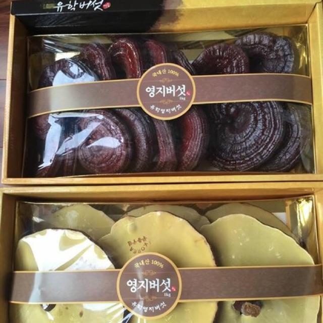 Nấm Linh Chi Núi Hàn Quốc (đóng hộp, đóng túi, thái lát)
