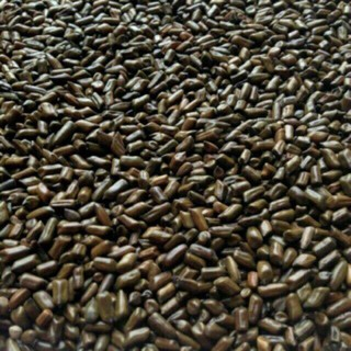Combo 5kg hạt muồng muồng đồ chơi xúc cát