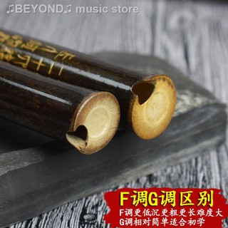 Bộ Kèn Harmonica Cho Người Mới Bắt Đầu
