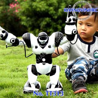 ROBOT ĐIỀU KHIỂN TT313