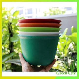 Combo 5 Chậu nhựa nhám, tròn vành 20 cm – Green City