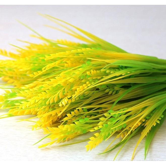 Bông lúa giả, bông lúa nặng hạt (giá bán theo nhánh)