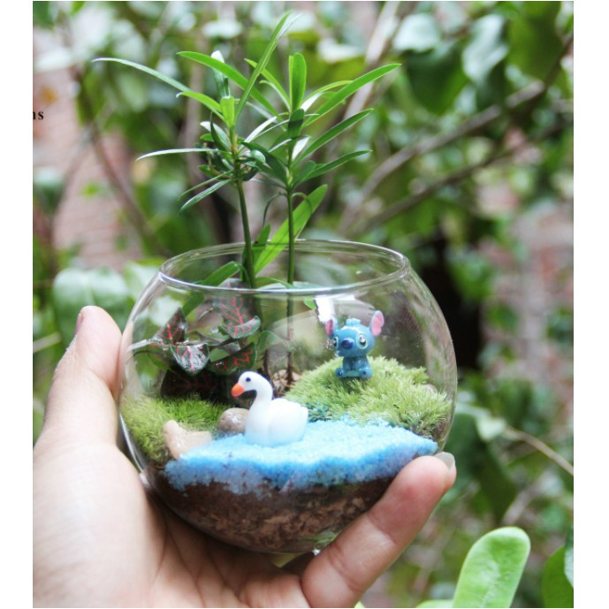 Mẫu bonsai hồ thiên nga để DIY trang trí với bồn thủy tinh 3 chấu(SMD-36)