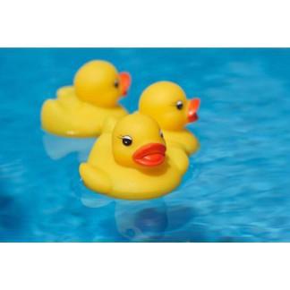 [⚡️ Sale ⚡️] Đàn vịt thả bồn tắm cho bé - RẺ NHẤT VN