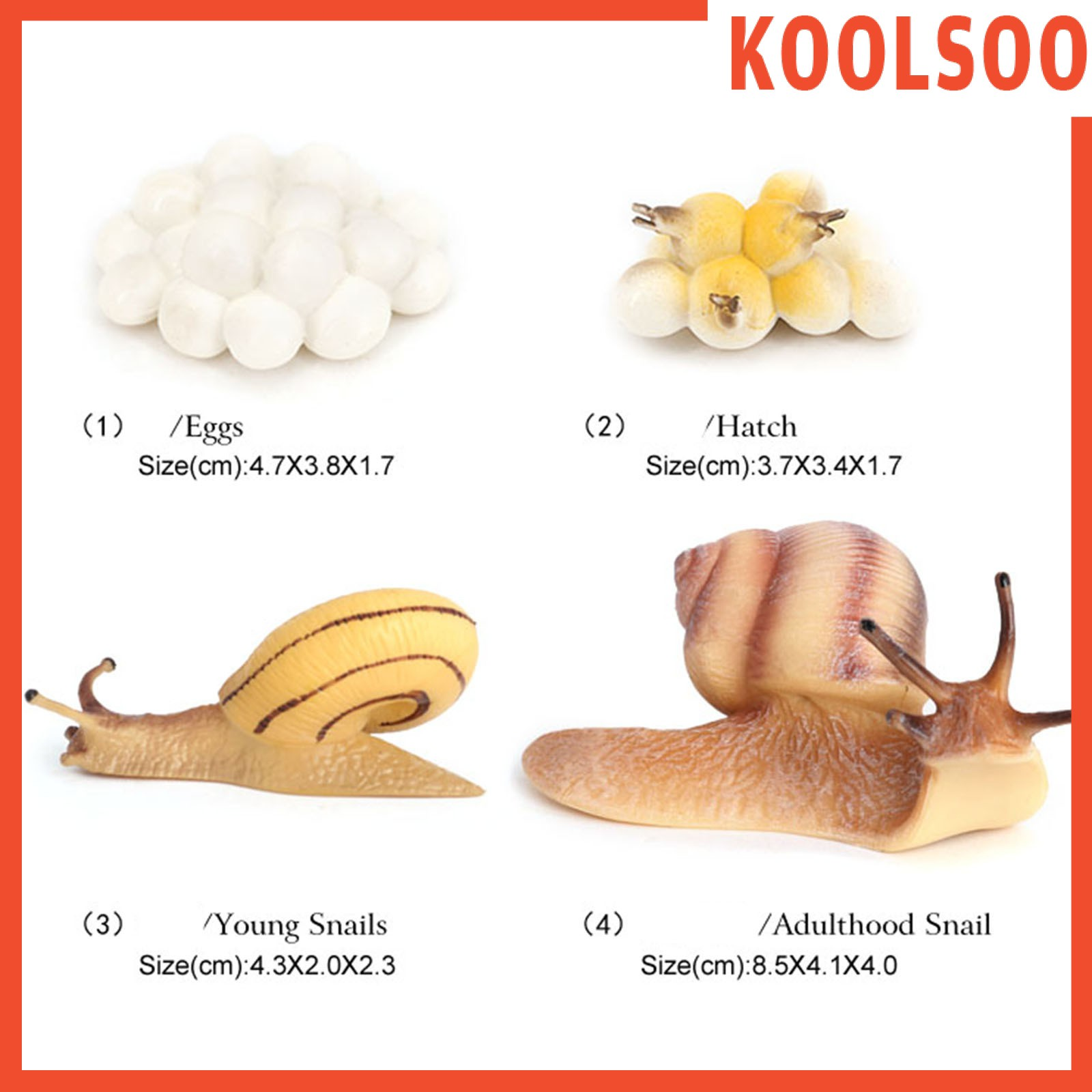 [KOOLSOO] Plastic Lifelike Snail Growth Cycle Models Kit Life Cycle Insect Model Kids Toys