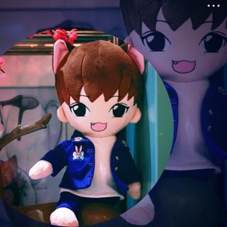 Doll Catfood Karry Vương Tuấn Khải