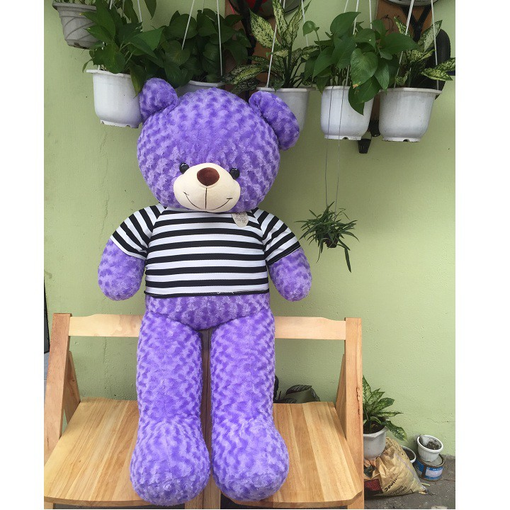 Gấu bông Teddy khổ 1m4 màu tím