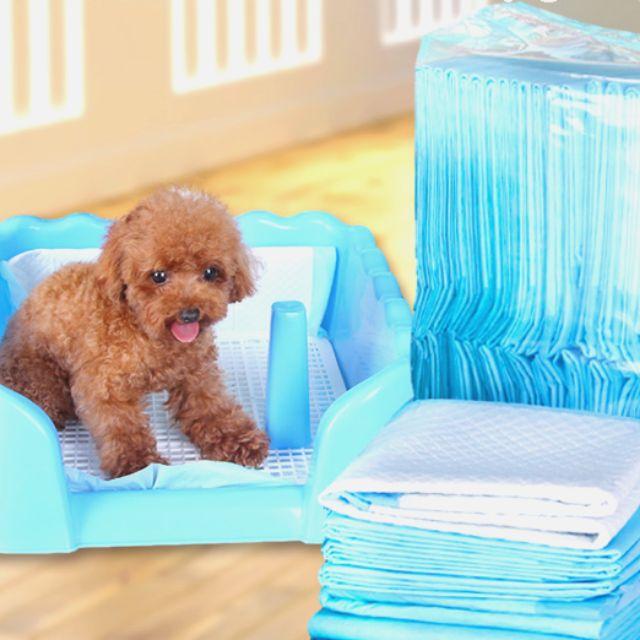 Tã lót chuồng vệ sinh cho cún - hàng tốt