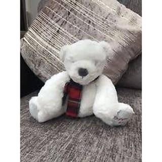 Gấu trắng giáng sinh- NEXT