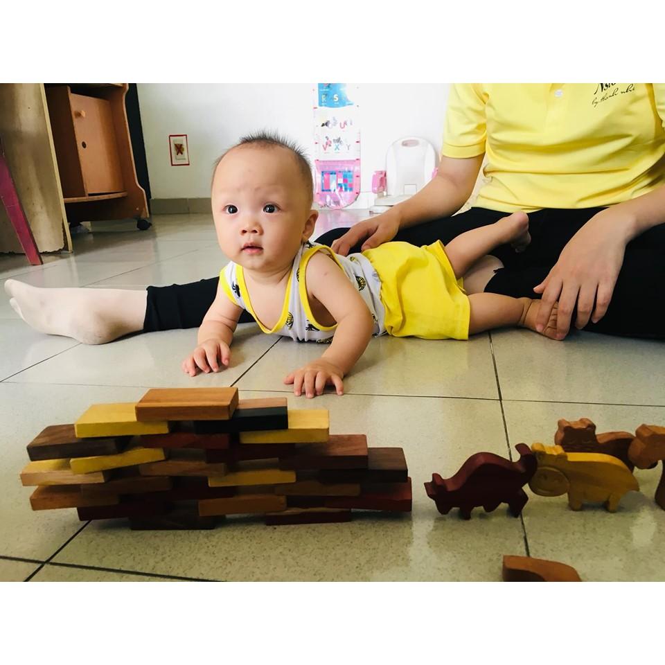 Bộ Domino bằng gỗ thịt 35 miếng - Hàng thủ công an toàn cho bé từ nghệ nhân lành nghề...