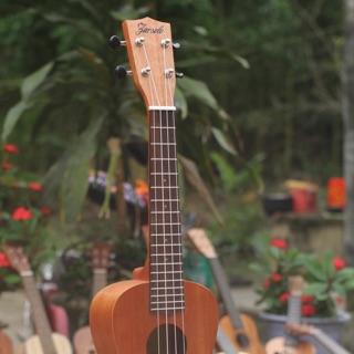 đàn ukulele concer 23in