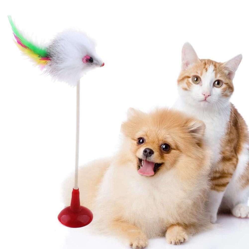 Funny Pet Cat Toys Feather False Mouse Bottom Sucker Cat Kitten Playing Toys