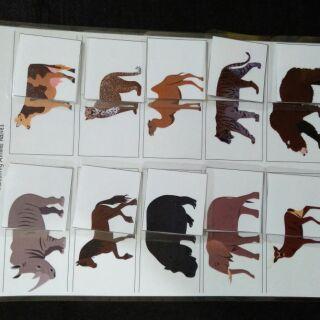 HỌC LIỆU CHO BÉ: Ghép hình đuôi động vật