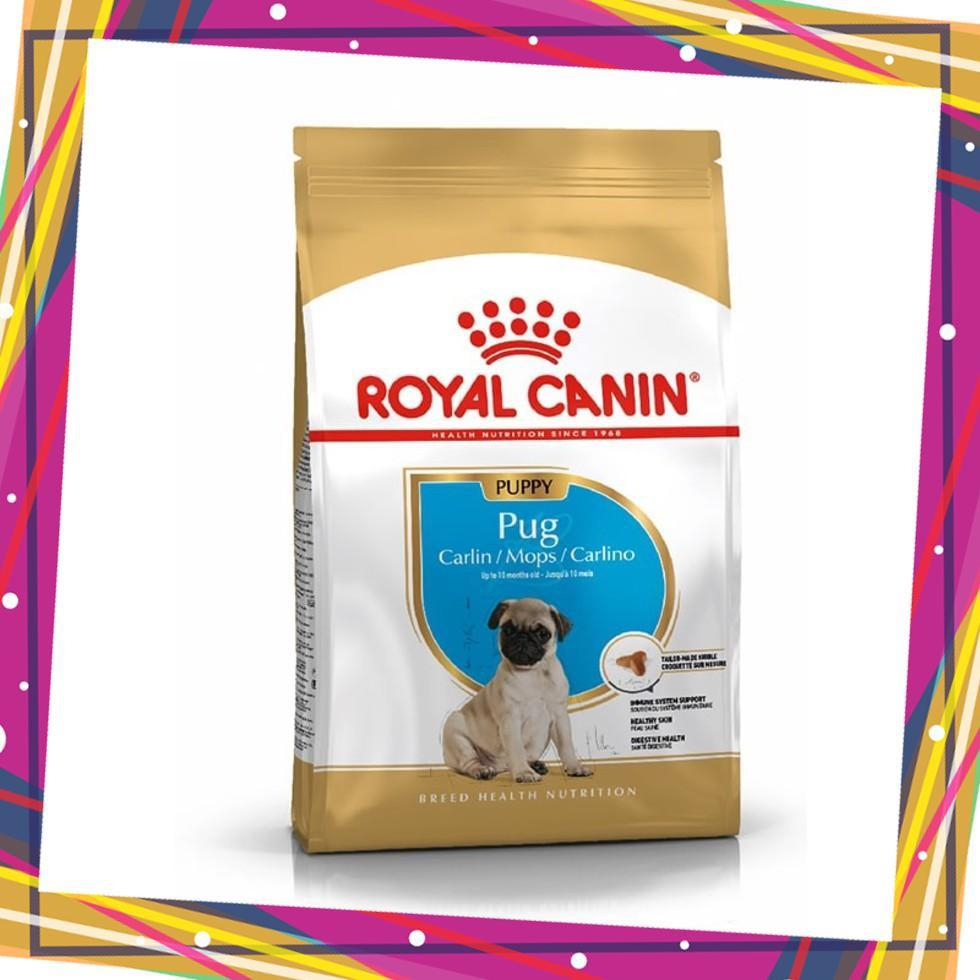 Thức ăn cho chó Royal Canin Pug Junior