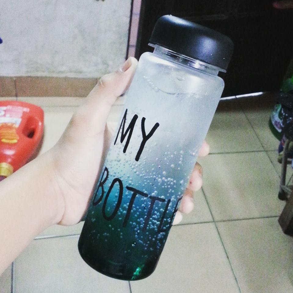 Bình nước my bottle, gấu, vịt (kèm túi)
