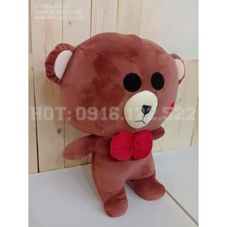 Gấu Bông Brown siêu rẻ sài gòn nha