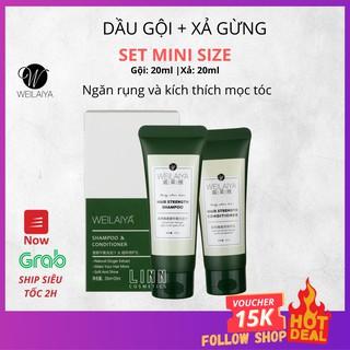 Bộ dầu gội gừng Weilaiya giảm rụng kích mọc tóc, Mini size (gội 20ml + xả 20ml) thumbnail