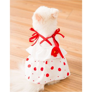 Váy dây cho chó mèo - Lucky girl thumbnail