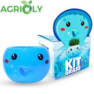Chậu cây trồng Agrioly Grass Kit – hình BẠCH TUỘC và hạt giống tiêu chuẩn của Úc.