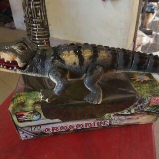 Cá sấu chúa
