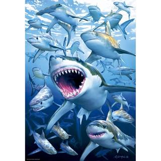 Đồ Chơi Xếp Hình Cá Mập 500 Pc Cho Bé
