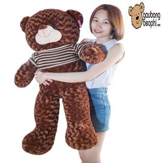 [ HOT 2019 ]Gấu bông – gấu bông khổ vải 1m2