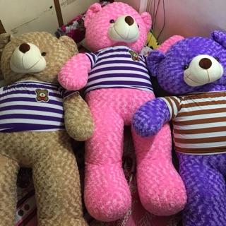 Teddy 1m6