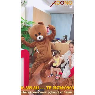 Xả hàng mascot gấu Brown