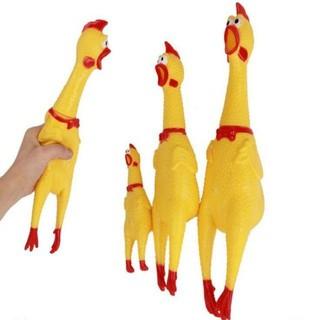 Gà bóp kêu Shrilling Chicken, gà A Lử (32cm) thumbnail