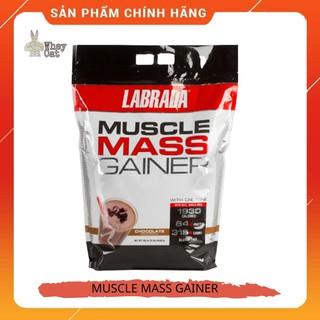 Sữa tăng cân Muscle Mass Gainer 12lbs chính hãng – Whey Cat