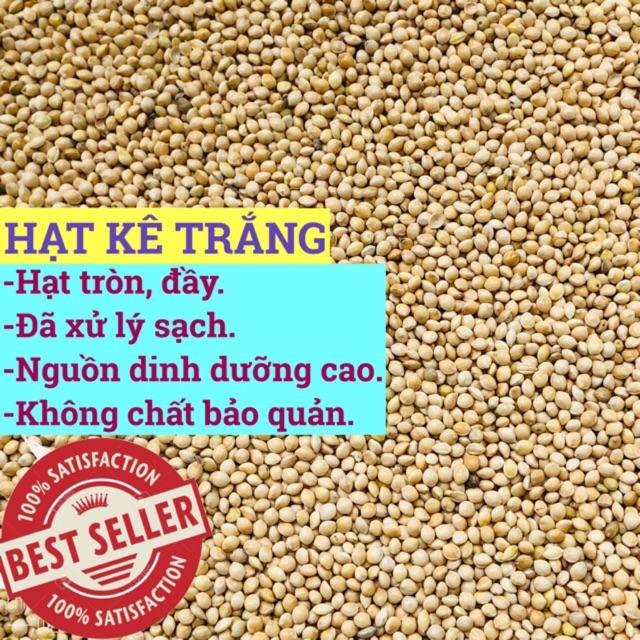 1kg hạt kê trắng - thức ăn: Chim Cảnh • Sóc • Hamster..