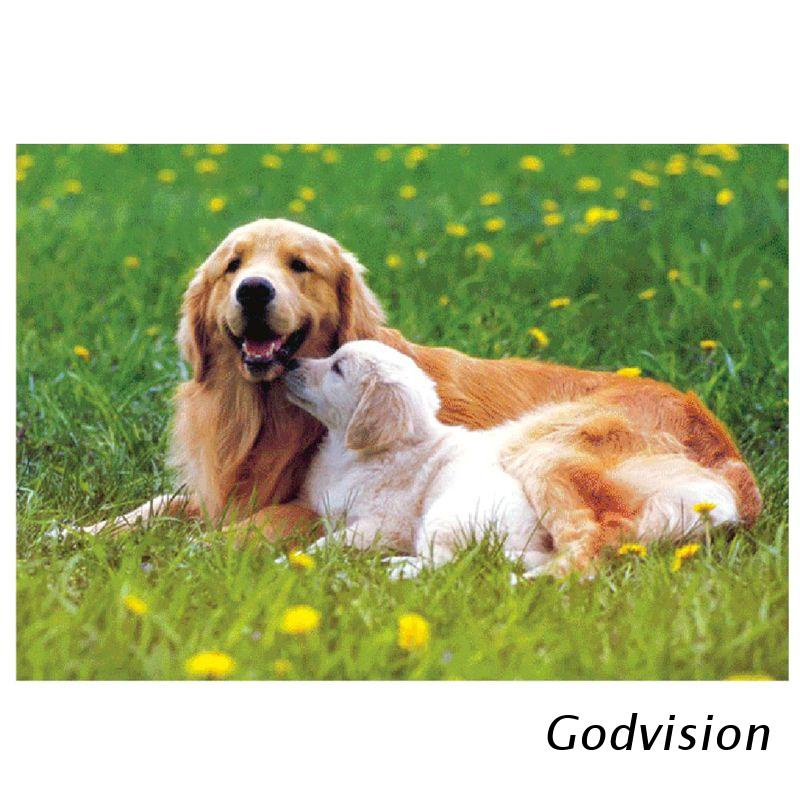 BB lovely Dog 1000Pcs Jigsaw Paper Puzzles Educational Toys for adults Children