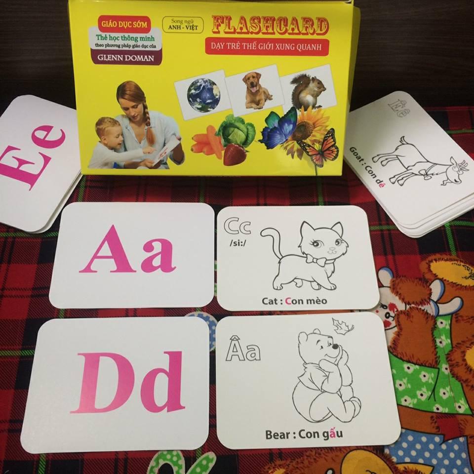 Combo Bộ thẻ học loại to và Bộ Tranh treo tường cho bé ( Bộ thẻ thế giới xung quanh loại to gồm 14 chủ đề và 280 thẻ )