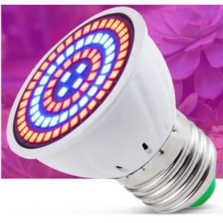 Đèn LED trồng cây trong nhà, cây để bàn