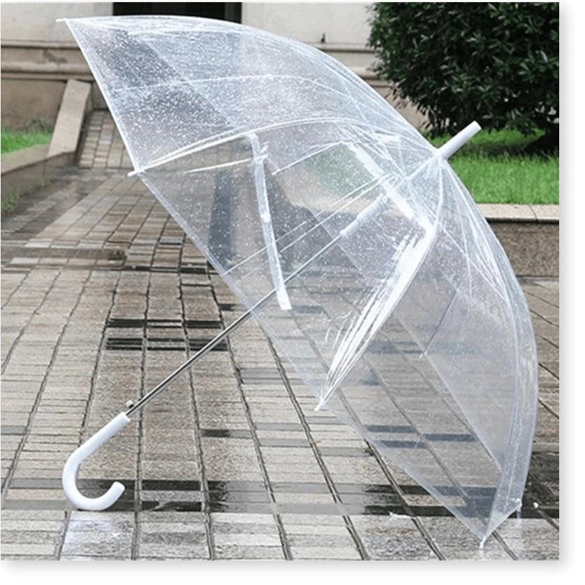 Dù che mưa   1 ĐỔI 1    Ô dù đi mưa cao cấp với thiết kế trong suốt nhiều màu, bền thể hiện phongn cách thời trang 7