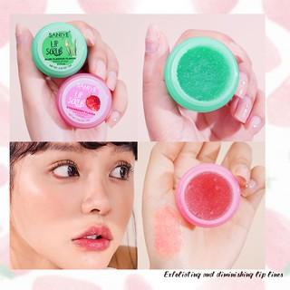 SANIYE LiP Scrub Aloe flavour Exfoliating Cream Moisturizing Lip Care K1134