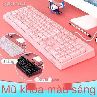 ◇▽✺Silver Eagle K200 Cơ cảm ứng bàn phím chơi game Máy tính để bàn Máy tính phổ thông Bộ bàn phím và chuột có dây
