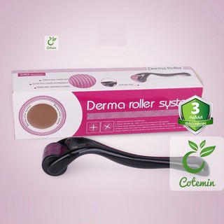 [Mã COSHOT03 giảm 10% đơn 350K] Cây lăn kim tay 540 đầu kim DSR Derma Roller System - COTEMIN thumbnail