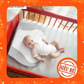 [Đồ mẹ và bé] Gối Chống Chào Ngược Babymoov Cho Bé